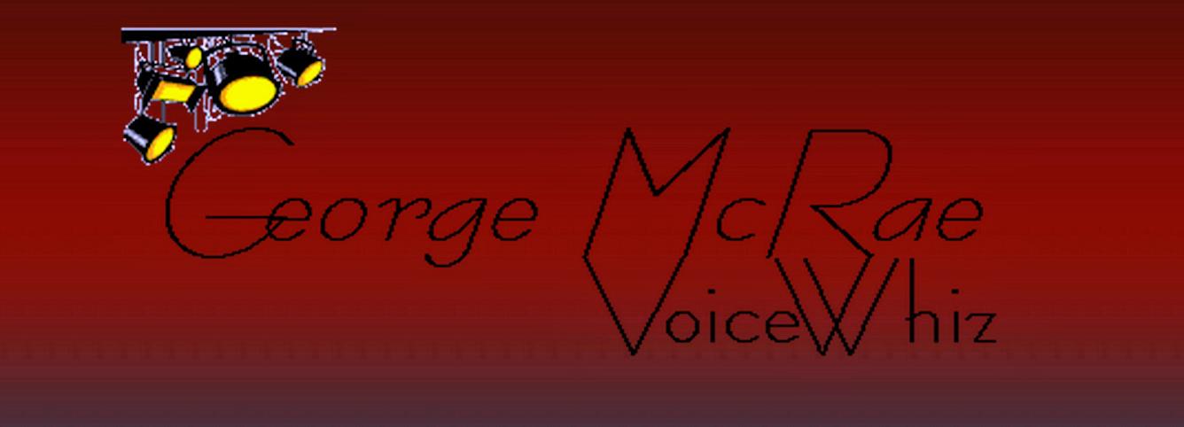 Voicewhiz